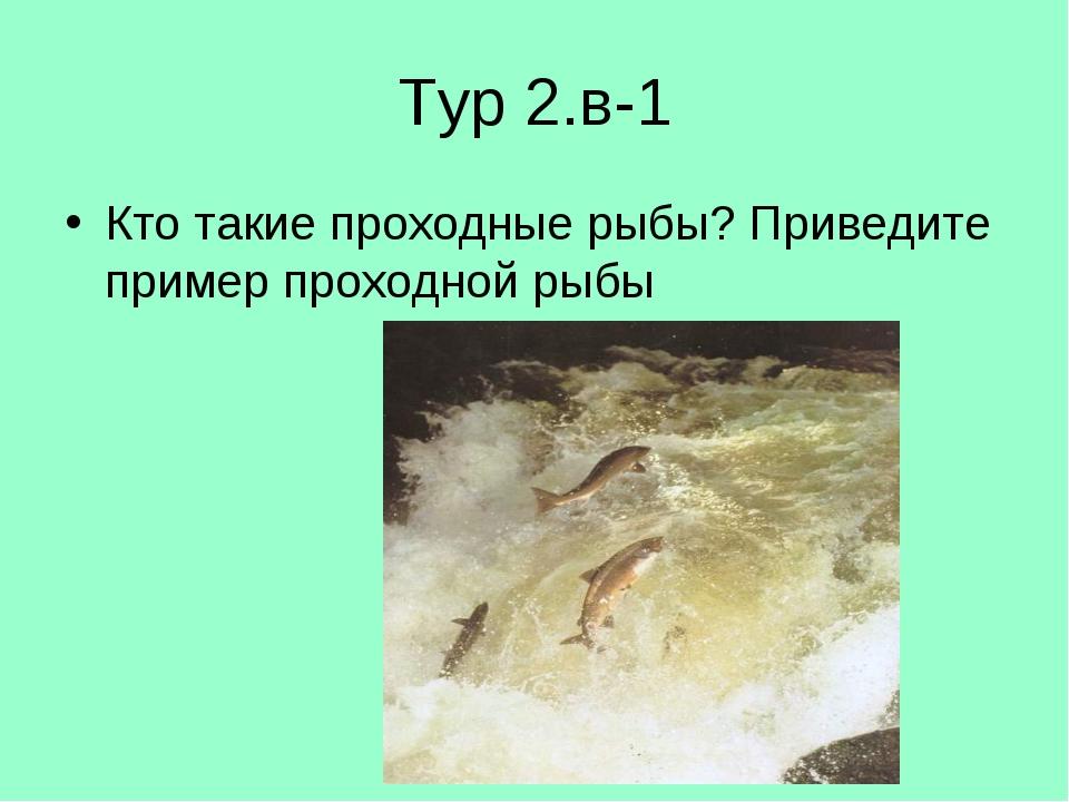 Тур 2.в-1 Кто такие проходные рыбы? Приведите пример проходной рыбы