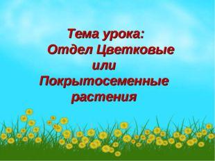 Тема урока: Отдел Цветковые или Покрытосеменные растения