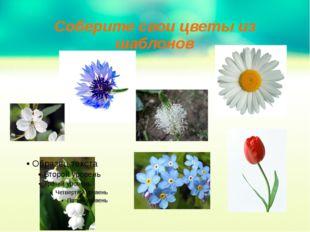 Соберите свои цветы из шаблонов