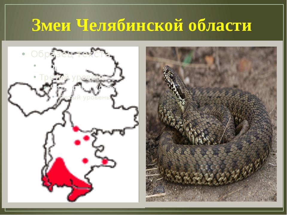 Змеи Челябинской области