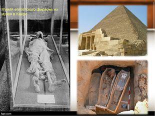Мумия египетского фараона из музея в Каире