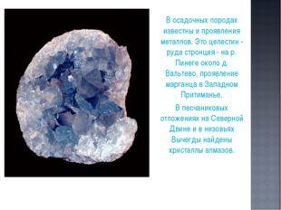 В осадочных породах известны и проявления металлов. Это целестин - руда стро