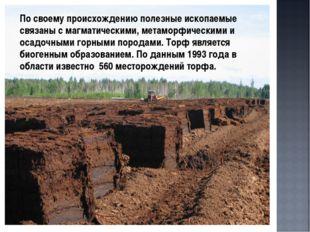 По своему происхождению полезные ископаемые связаны с магматическими, метамо
