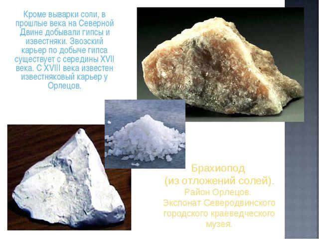 Кроме выварки соли, в прошлые века на Северной Двине добывали гипсы и извест...