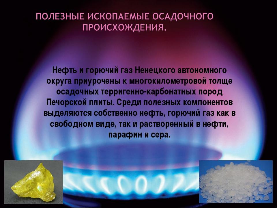Нефть и горючий газ Ненецкого автономного округа приурочены к многокилометро...