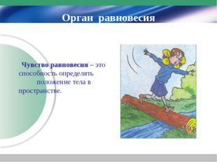 Орган равновесия Чувство равновесия – это способность определять положение те