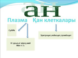 Эритроцит,лейкоцит,тромбоцит Су90% Нәруыз,көмірсу,май Мин тұз.