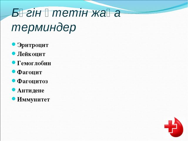 Бүгін өтетін жаңа терминдер Эритроцит Лейкоцит Гемоглобин Фагоцит Фагоцитоз А...