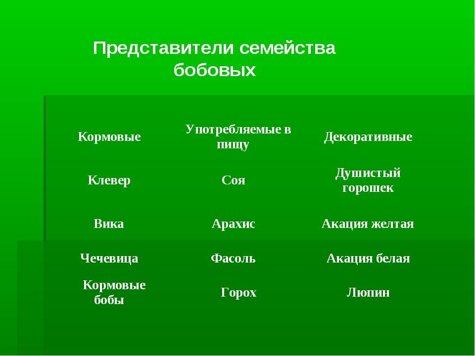 Представители семейства бобовых Кормовые Употребляемые в пищу Декоратив...