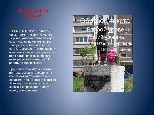 Пес по кличке Верный На Южном шоссе в Тольятти открыт памятник псу по кличке...