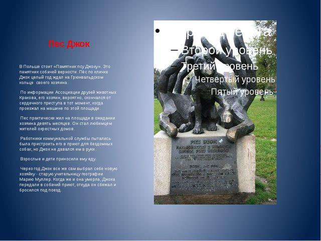 Пес Джок В Польше стоит «Памятник псу Джоку». Это памятник собачей верности....