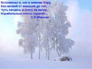 Вспоминал я, как в зимнем бору, Без ветвей от макушек до пят, Чуть качаясь в
