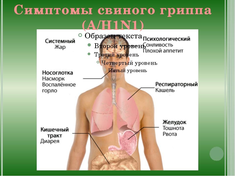 Симптомы свиного гриппа (А/Н1N1)