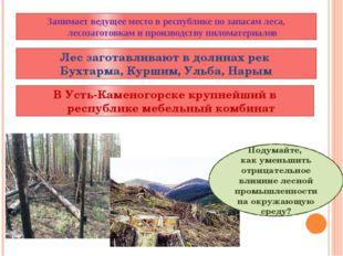 Лес заготавливают в долинах рек Бухтарма, Куршим, Ульба, Нарым Подумайте, как