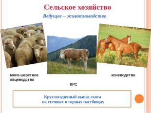Сельское хозяйство Ведущее – животноводство мясо-шерстное овцеводство КРС Кр