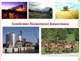 Хозяйство Восточного Казахстана