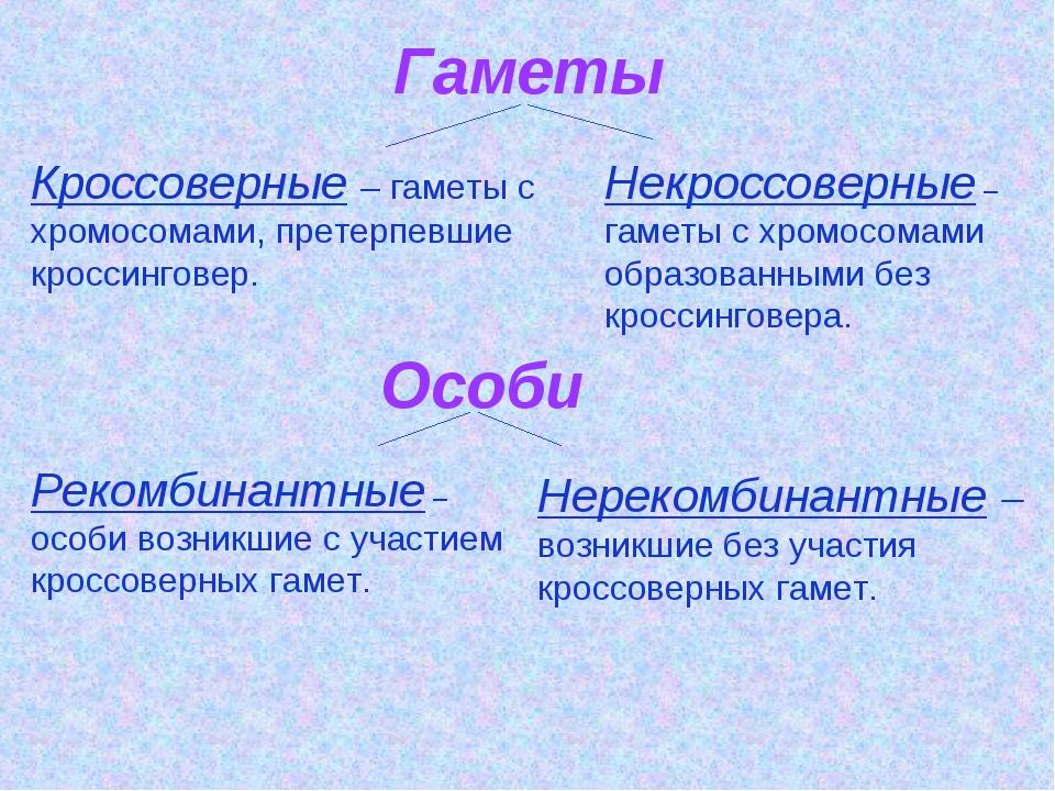 Гаметы Кроссоверные – гаметы с хромосомами, претерпевшие кроссинговер. Некрос...