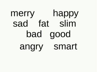 merry happy sad fat slim bad good angry smart
