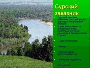 Сурский заказник Сурский заказник - наиболее богатый уголок природы Ульяновск
