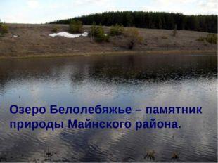 Озеро Белолебяжье – памятник природы Майнского района.