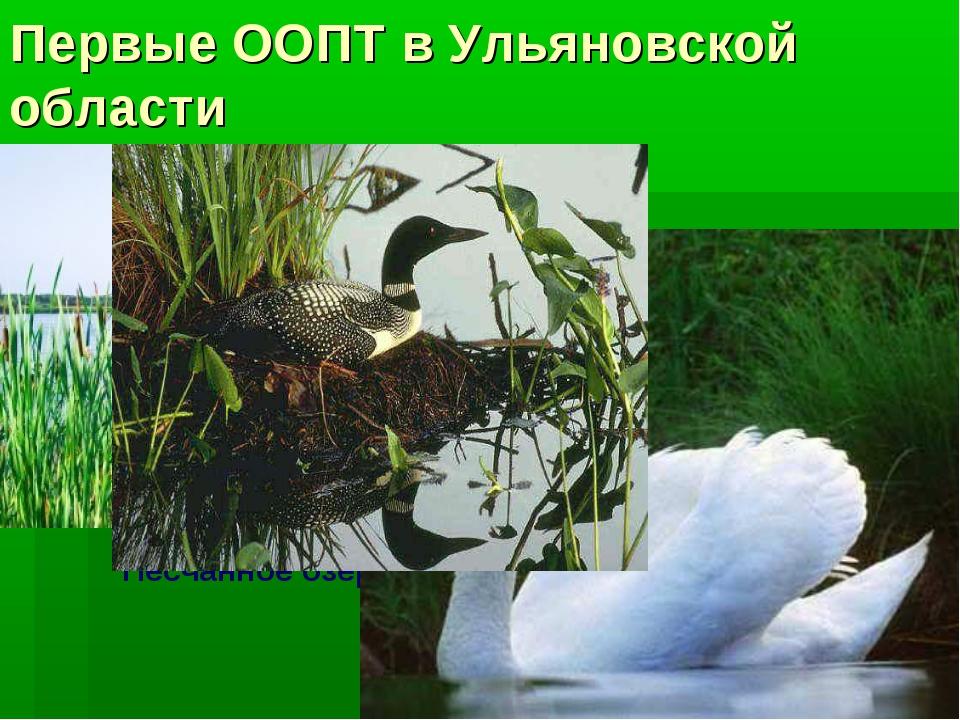Первые ООПТ в Ульяновской области Песчанное озеро Болото Кочкарь