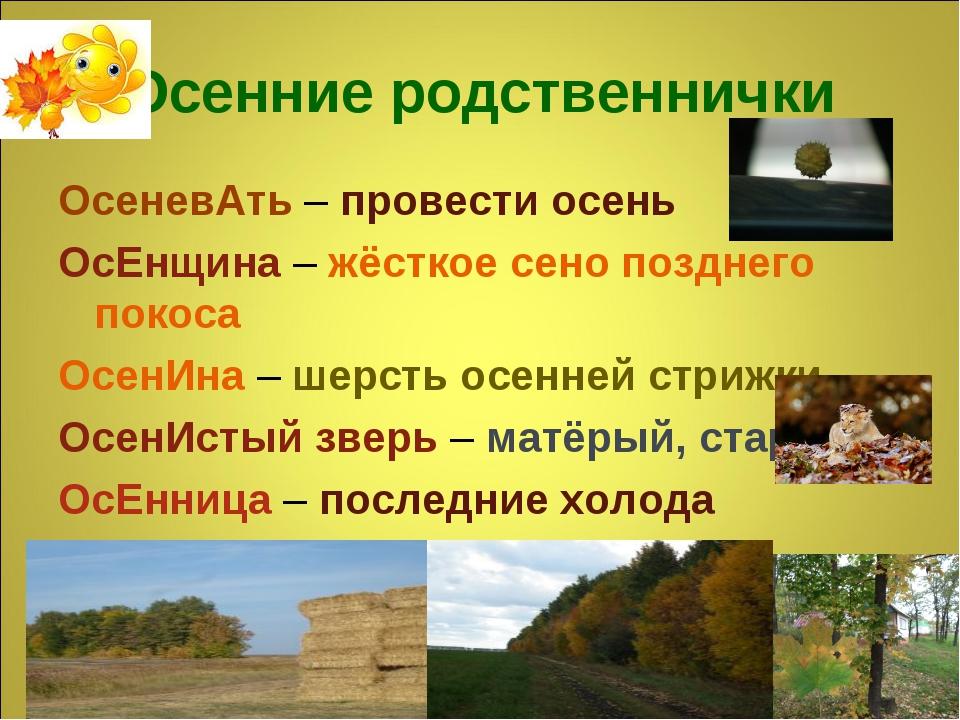 Осенние родственнички ОсеневАть – провести осень ОсЕнщина – жёсткое сено позд...