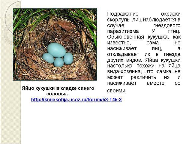 Подражание окраски скорлупы лиц наблюдается в случае гнездового паразитизма...