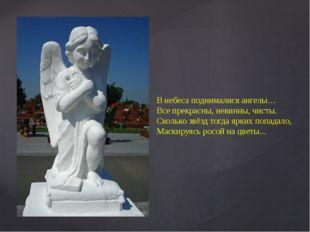 В небеса поднималися ангелы… Все прекрасны, невинны, чисты. Сколько звёзд тог
