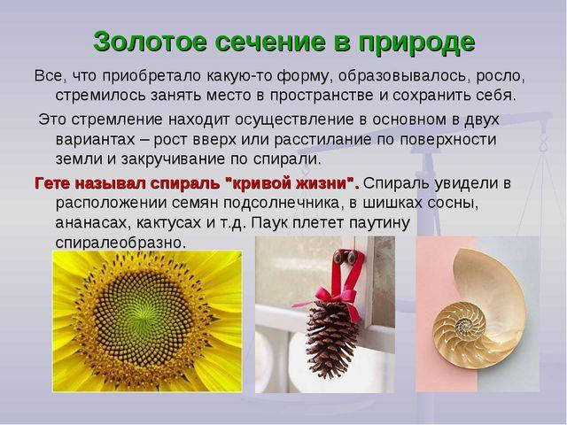 Золотое сечение в природе Все, что приобретало какую-то форму, образовывалось...
