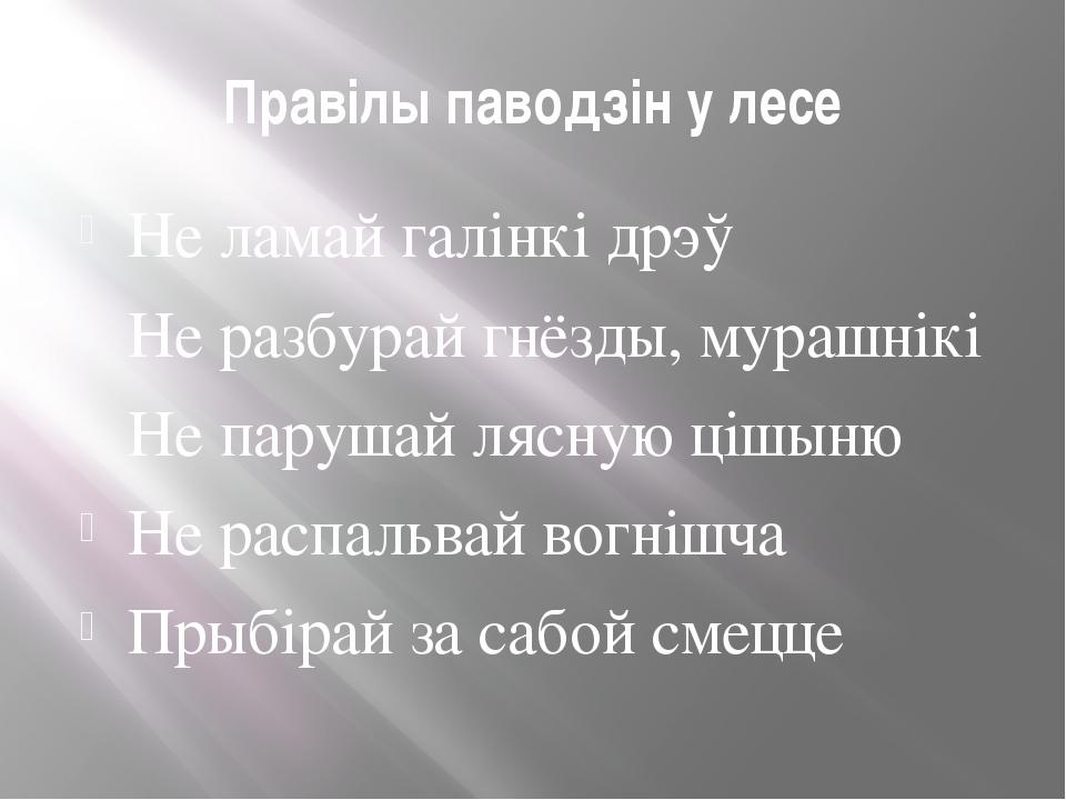 Правілы паводзін у лесе Не ламай галінкі дрэў Не разбурай гнёзды, мурашнікі Н...
