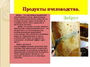 Продукты пчеловодства. Забрус - это срезанные крышечки запечатанных сотов. З