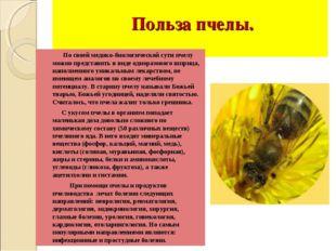 Польза пчелы. По своей медико-биологической сути пчелу можно представить в в