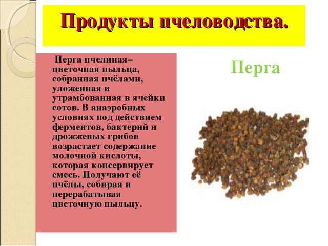 Продукты пчеловодства. Перга пчелиная– цветочная пыльца, собранная пчёлами, у...