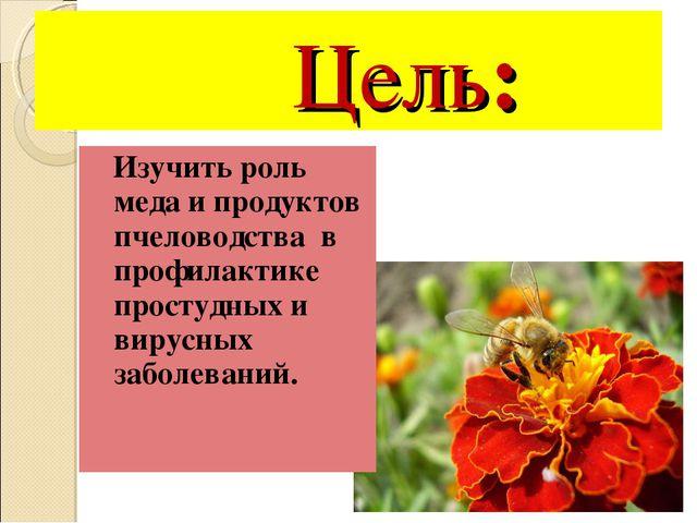 Цель: Изучить роль меда и продуктов пчеловодства в профилактике простудных и...