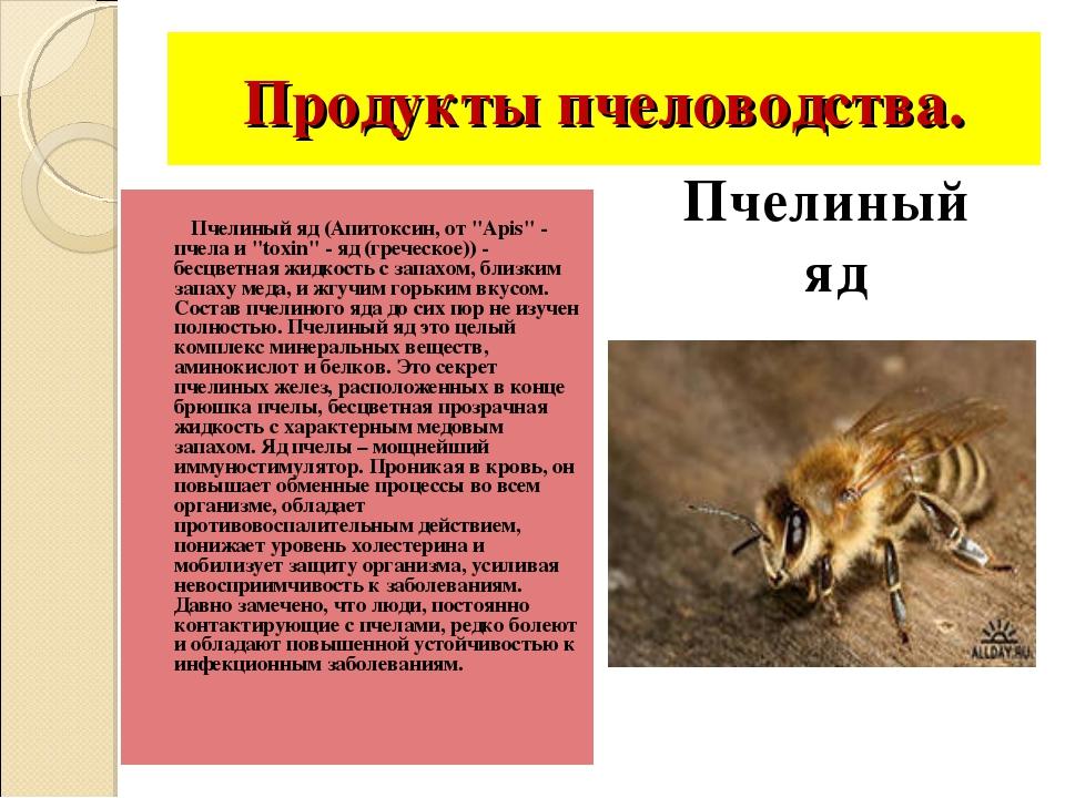 """Продукты пчеловодства. Пчелиный яд (Апитоксин, от """"Apis"""" - пчела и """"toxin"""" -..."""