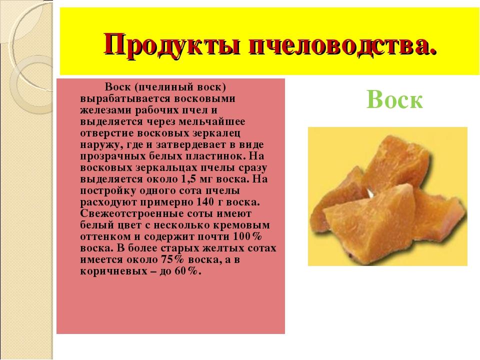 Продукты пчеловодства. Воск (пчелиный воск) вырабатывается восковыми железами...