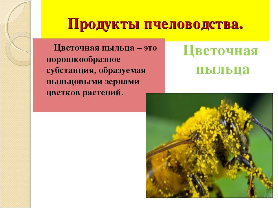 Продукты пчеловодства. Цветочная пыльца – это порошкообразное субстанция, об...