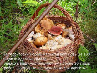 На территории России насчитывается свыше 100 видов съедобных грибов, однако в