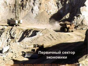 Первичный сектор экономики Пономаренко Г.Н., учитель географии МБОУ СОШ №12 г