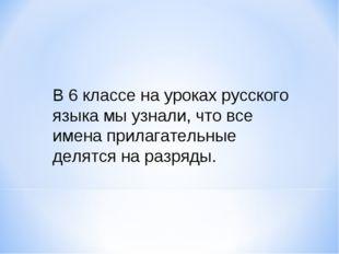 В 6 классе на уроках русского языка мы узнали, что все имена прилагательные д