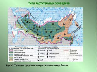 ТИПЫ РАСТИТЕЛЬНЫХ СООБЩЕСТВ Карта 1. Типичные представители растительного ми