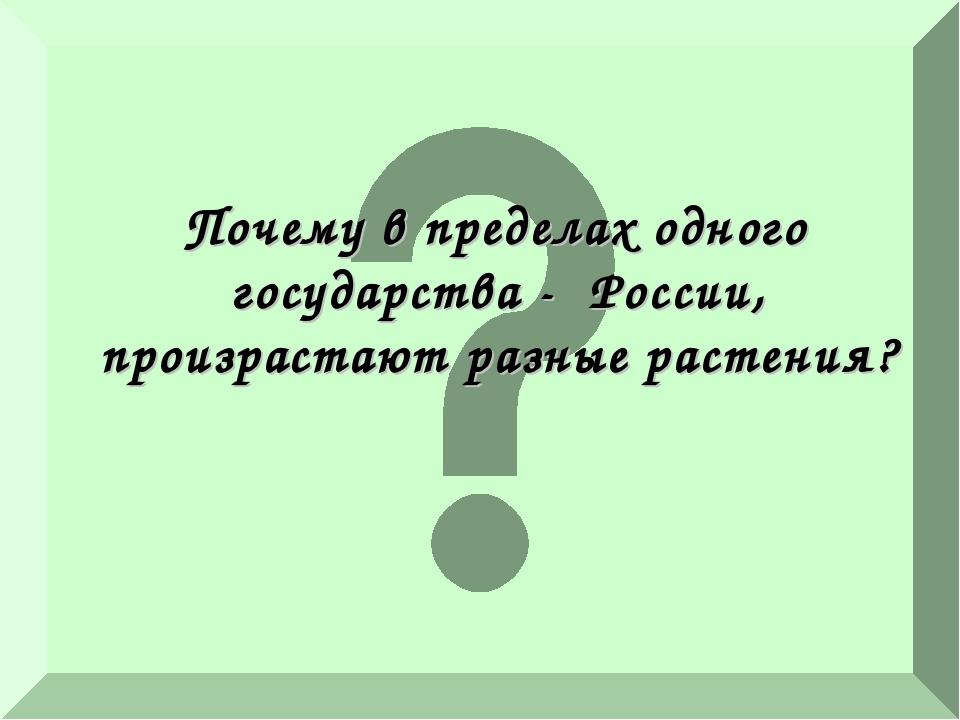 Почему в пределах одного государства - России, произрастают разные растения?