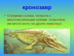кронозавр Огромная голова, челюсти с многочисленными зубами позволяли им вест