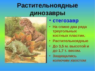 Растительноядные динозавры стегозавр На спине два ряда треугольных костных пл