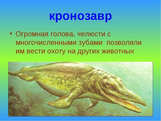 кронозавр Огромная голова, челюсти с многочисленными зубами позволяли им вест...