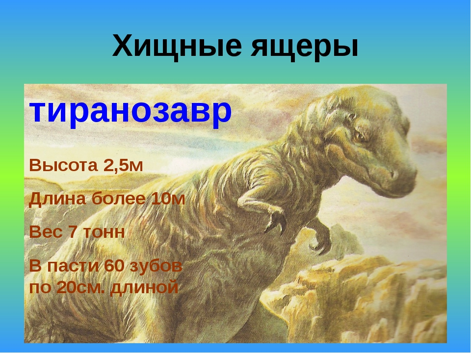 Хищные ящеры тиранозавр Высота 2,5м Длина более 10м Вес 7 тонн В пасти 60 зуб...