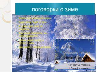 поговорки о зиме Береги нос в большой мороз. Будет зима, будет и лето. В чужи