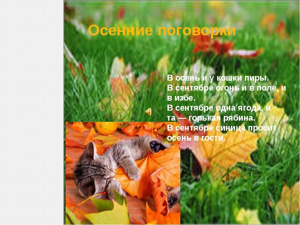 Осенние поговорки В осень и у кошки пиры. В сентябре огонь и в поле, и в избе...