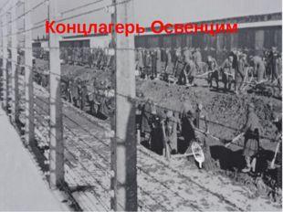 Концлагерь Освенцим Освенцим