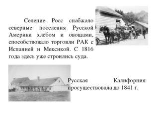 Селение Росс снабжало северные поселения Русской Америки хлебом и овощами, с
